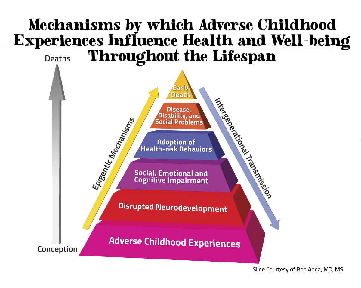 early childhood trauma lives on in adulthood essay Attachment theory explained through  autonomy in infancy and early childhood  style into adulthood 7 attachment classification can change.