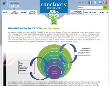 "The Sanctuary Institute recognizes the ""enormous stress"" by human service agencies and offers a process for balancing external pressures on the agency together with support for those served."