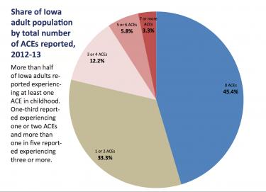 Iowa ACE Data